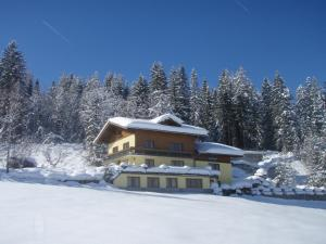 obrázek - Austrian Alps - Haus Kienreich