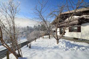 Finest Ski Chalet Leogang