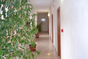 Hotel Citti