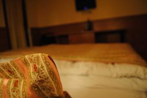 Motel Kiwi - фото 11