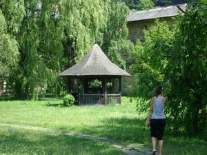 Pensiunea Casa Rodica, Гостевые дома  Гура-Гуморулуй - big - 41