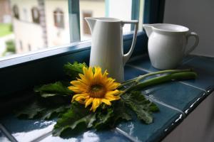 Apartments Cvetje v Jeseni