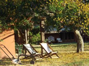 Ipacaa Lodge, Chaty v prírode  Esquina - big - 32