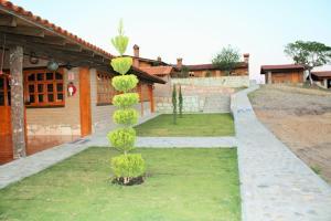 Centro Ecoturístico Cabañas Amatlán