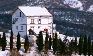 Отель Золотой ветер - фото 13