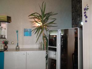 Orange Flower 2 Apartments, Apartmanok  Szófia - big - 49