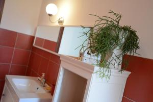 Il Pettirosso, Bed and breakfasts  Certosa di Pavia - big - 4