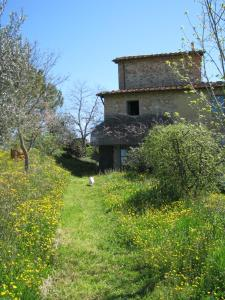 Podere Il Sodo, Appartamenti  Tavarnelle in Val di Pesa - big - 25