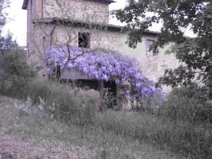 Podere Il Sodo, Апартаменты  Таварнелле-Валь-ди-Пеза - big - 23