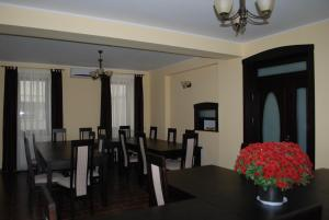 Vila Aris, Bed and Breakfasts  Iaşi - big - 28