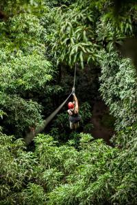 Rodavento Natural, Lodges  Jalcomulco - big - 18