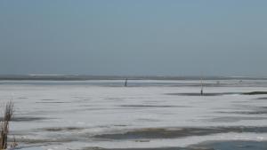 Armarova Ihre Ferienpension, Affittacamere  Cuxhaven - big - 59