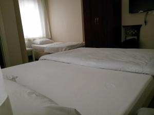 Stad Pansiyon, Hotely  İstanbul - big - 9