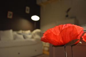 Holiday Home Ipericus, Prázdninové domy  Ypres - big - 19