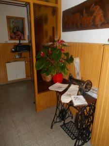 Apartments & Rooms Preseren