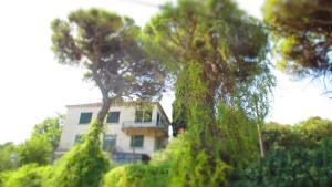 Apartment Dubrovnik Surprise