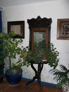 Pension Giulia, Guest houses  Timişoara - big - 21