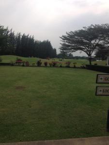 The Pine Golf & Lodge