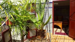 Ryad Bab Berdaine, Riads  Meknès - big - 115