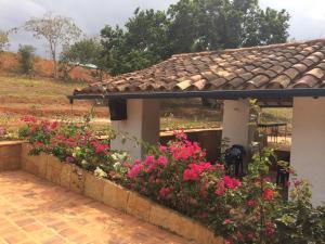 Баричара - Villa Margarita