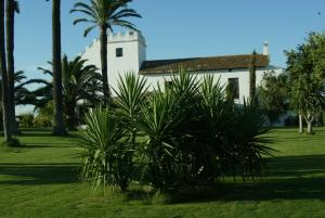 Hacienda La Indiana, Penzióny  Los Palacios y Villafranca - big - 8