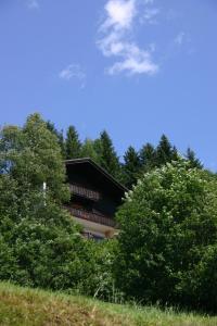 Haus Ilse