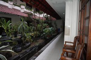 Hotel Matahari, Hotely  Yogyakarta - big - 14
