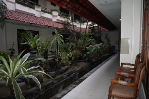 Hotel Matahari, Hotely  Yogyakarta - big - 7