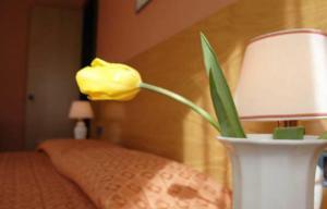 Hotel Des Geneys - Bardonecchia