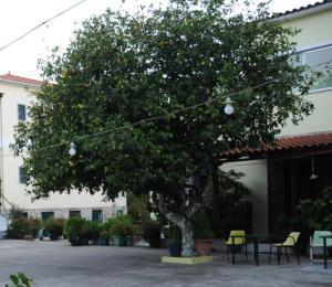 Costa-Rini Hotel