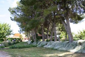 Casa Rural Cal Dalfó