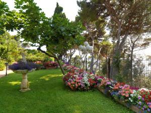 Hotel Villa Brunella, Hotels  Capri - big - 32