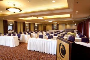 Executive Airport Plaza Hotel, Hotels  Richmond - big - 31