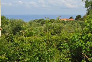 Villa Margherita, Holiday homes  Capo Vaticano - big - 9