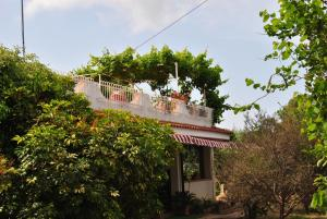 Villa Margherita, Holiday homes  Capo Vaticano - big - 8