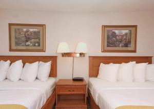 Quality Inn Saint Cloud, Hotels  Saint Cloud - big - 9