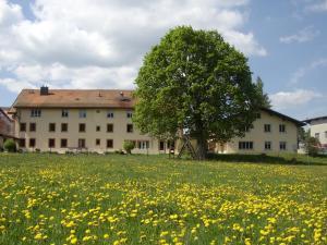 Centre Chrétien La Grange, Гостевые дома  Auberson - big - 63
