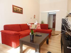 Muna Apartments - Iris, Appartamenti  Karlovy Vary - big - 12