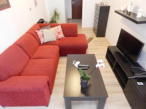 Muna Apartments - Iris, Appartamenti  Karlovy Vary - big - 2