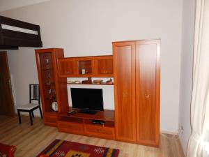 Muna Apartments - Iris, Appartamenti  Karlovy Vary - big - 8
