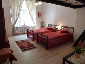Muna Apartments - Iris, Appartamenti  Karlovy Vary - big - 19
