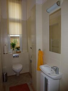 Muna Apartments - Iris, Appartamenti  Karlovy Vary - big - 18