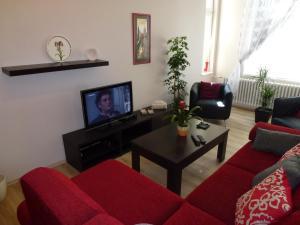 Muna Apartments - Iris, Appartamenti  Karlovy Vary - big - 24