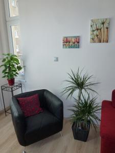 Muna Apartments - Iris, Appartamenti  Karlovy Vary - big - 21