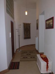 Muna Apartments - Iris, Appartamenti  Karlovy Vary - big - 23