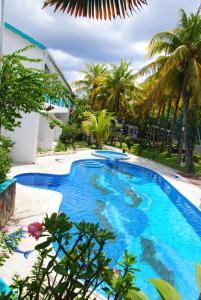 obrázek - Coral Azur Cosi Holidays