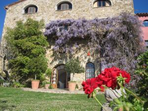 Can Serola, Hotel  Sales del Llierca - big - 50