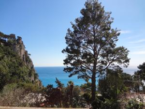 Casa Augusto B&B, Panziók  Capri - big - 29