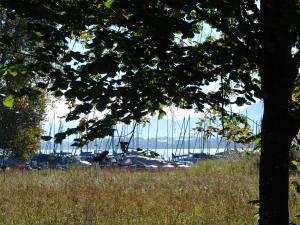 Zum Fischer am See, Pensionen  Prien am Chiemsee - big - 34
