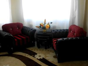 Antakya Rental House, Apartmány  Hatay - big - 31